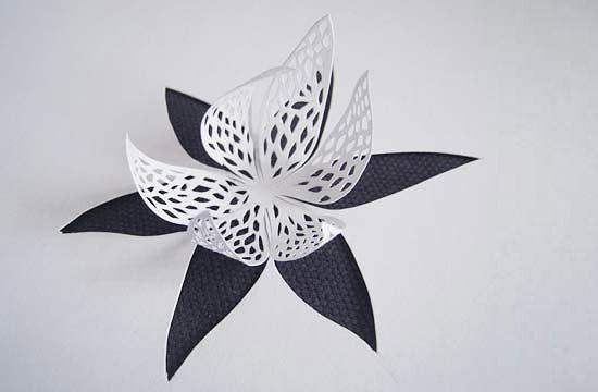вырезание из бумаги цветы